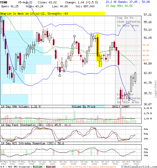 TENB - Large Daily Candlestick Stock Chart