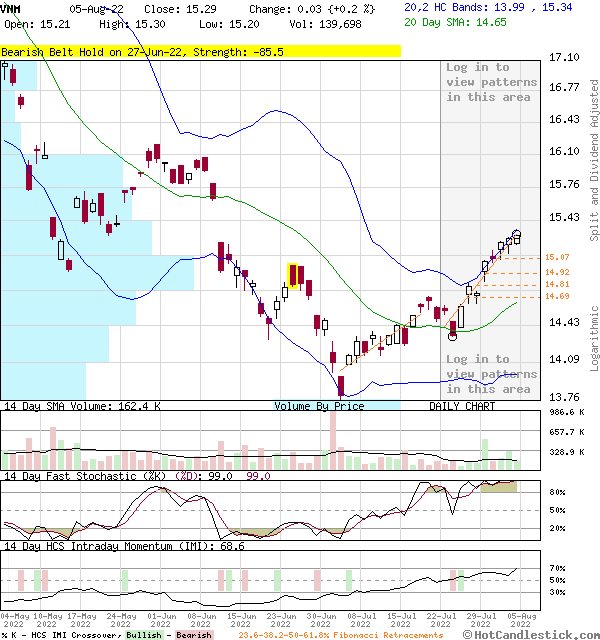 VNM - Large Daily Candlestick Stock Chart