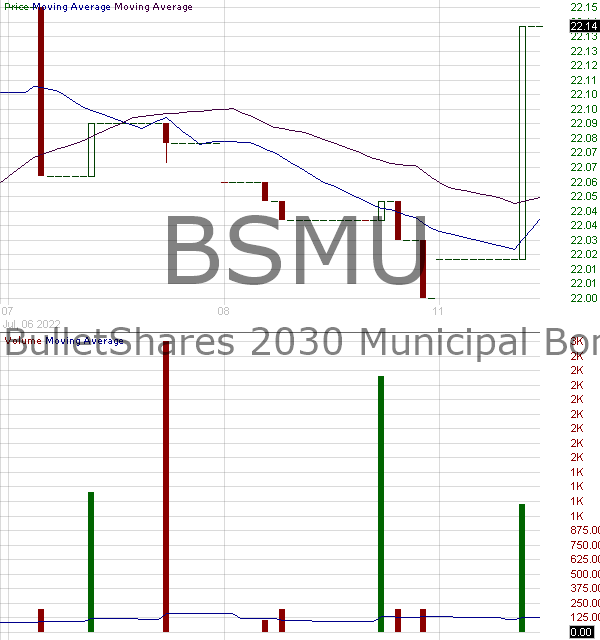 BSMU - Invesco BulletShares 2030 Municipal Bond ETF 15 minute intraday candlestick chart with less than 1 minute delay