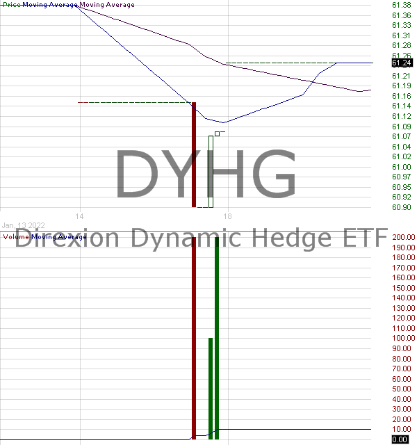 DYHG - Direxion Dynamic Hedge ETF 15 minute intraday candlestick chart with less than 1 minute delay