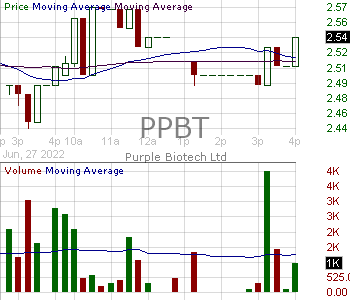 PPBT - Purple Biotech Ltd. - ADR 15 minute intraday candlestick chart with less than 1 minute delay