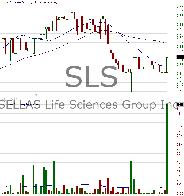 SLS - SELLAS Life Sciences Group Inc. 15 minute intraday candlestick chart with less than 1 minute delay