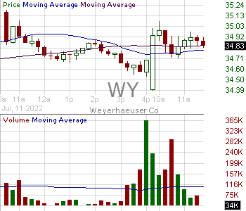 WY - Weyerhaeuser Company 15 minute intraday candlestick chart with less than 1 minute delay