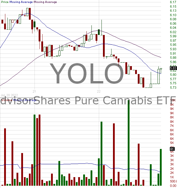 YOLO - AdvisorShares Pure Cannabis ETF 15 minute intraday candlestick chart with less than 1 minute delay
