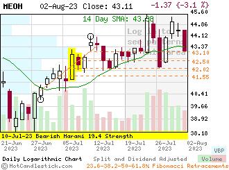 MEOH - Small Daily Candlestick Stock Chart